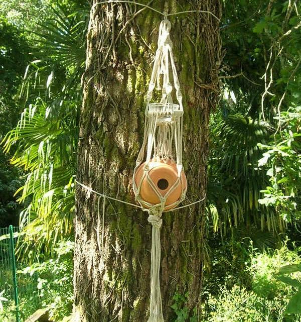 Fabrication d'un nid d'oiseau avec un pot de fleur